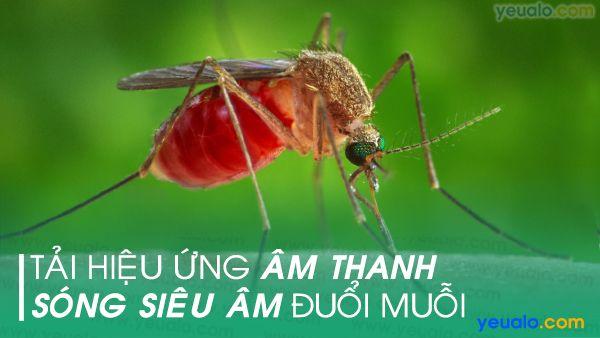 Âm thanh đuổi muỗi