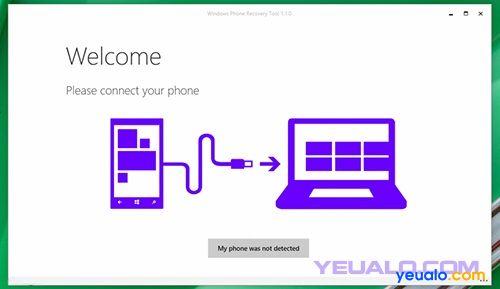 Cách hạ cấp từ Windows 10 về lại Windows Phone 8.1