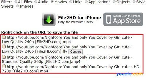 Cách tải video trên YouTube về máy tính với file2hd 2
