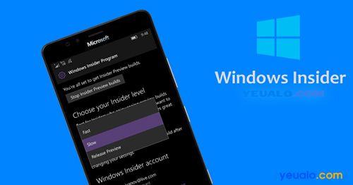 Người dùng nội bộ Windows (Windows Insider) là gì