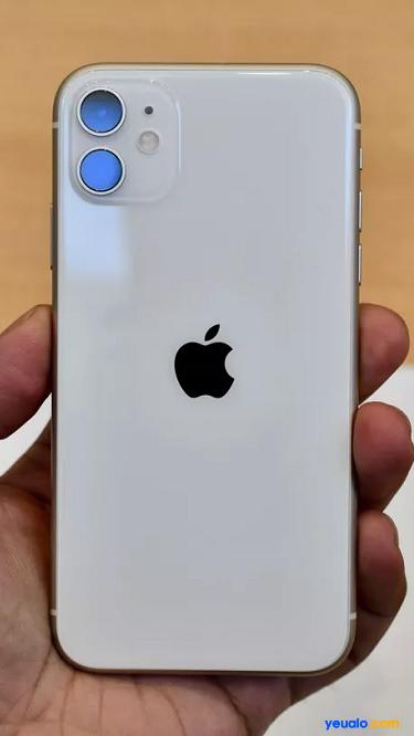 Hình nền mặt sau giả iPhone 11