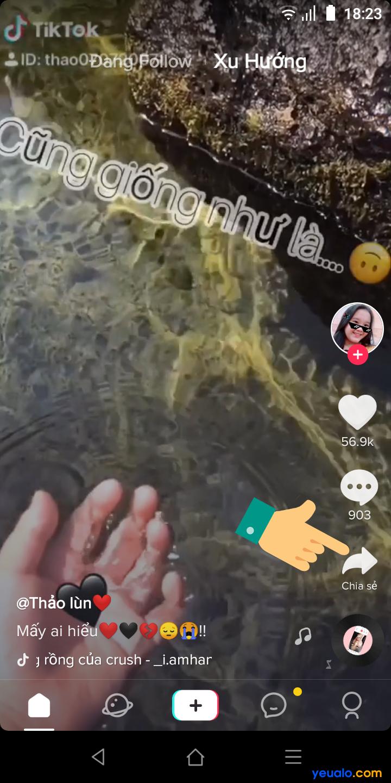 Cách lấy video trên Tik Tok làm hình nền điện thoại 6