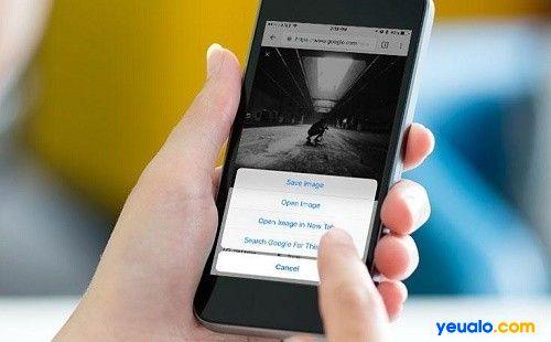 Tìm kiếm bằng hình ảnh trên iPhone